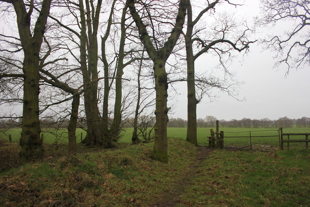 Stile and path from Big Wood, Lower Withington