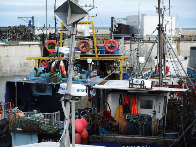 Fishing vessels, Seahouses