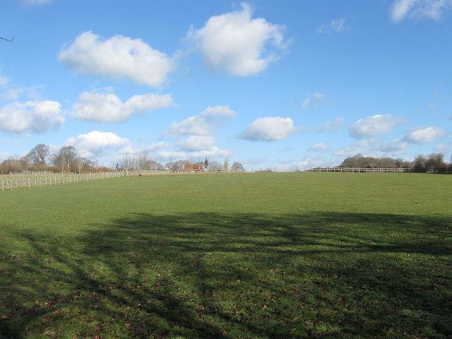 Dencher Field