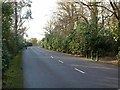 NZ2570 : Private road through Gosforth Park by Oliver Dixon