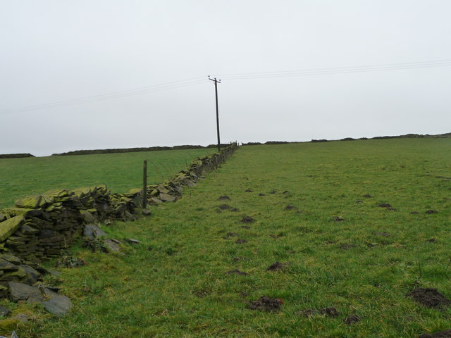 Telegraph pole on Haw Cliff hillside