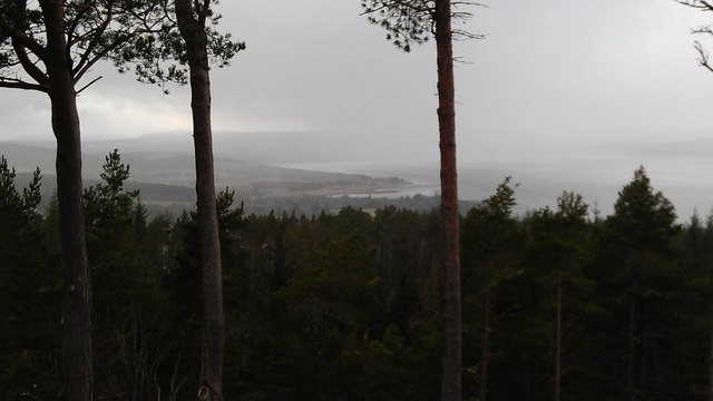 Beauly Firth through the trees and rain