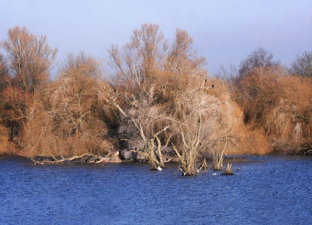 Dorchester Lakes, Winter Colours 2