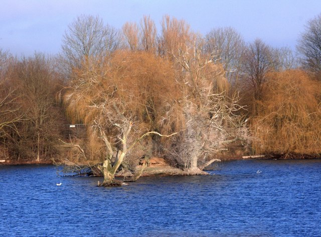 Dorchester Lakes, Winter Colours 3