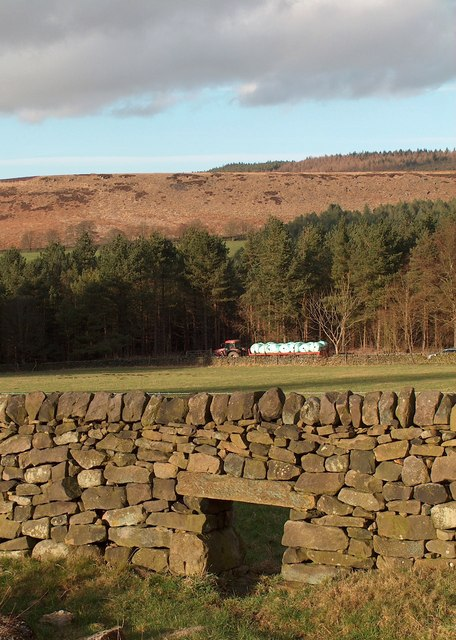 """Lunky Hole"" with Beeley Plantation beyond"