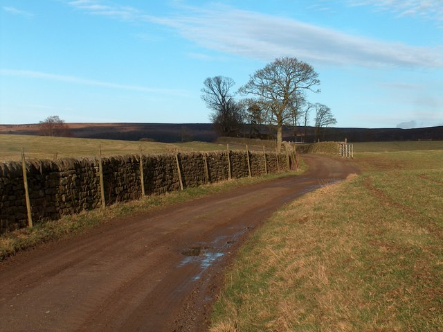 Track to the north east from Fallinge