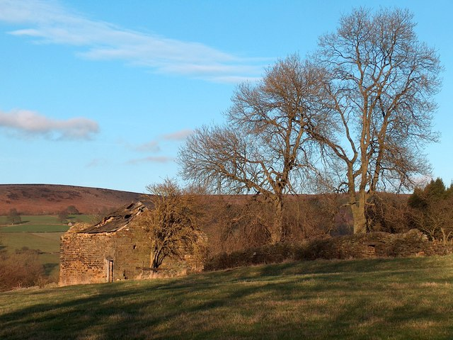Old barn and trees above Beeley