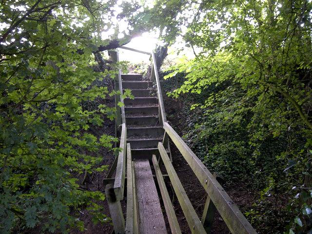 Footbridge, Risley Park