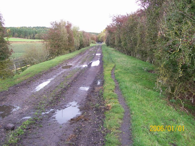 old railway line near to Cliburn moss