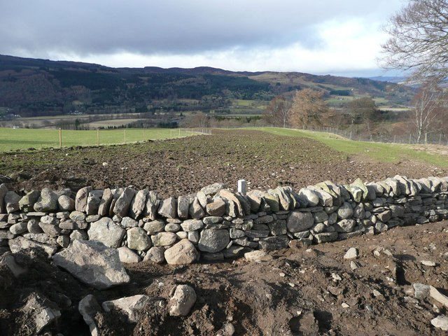 Reinstated dry stone wall
