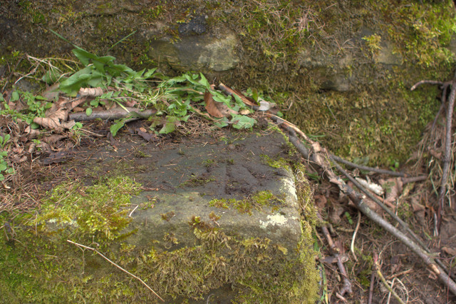 Rivet Bench Mark on a Stile, Busky Dike Lane