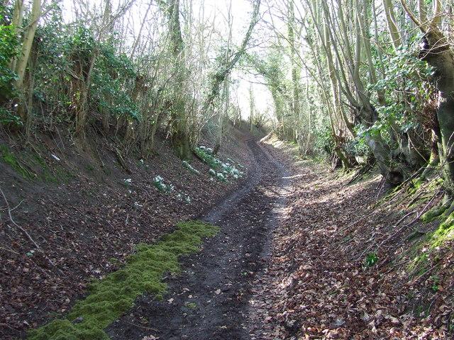 Old Trackway