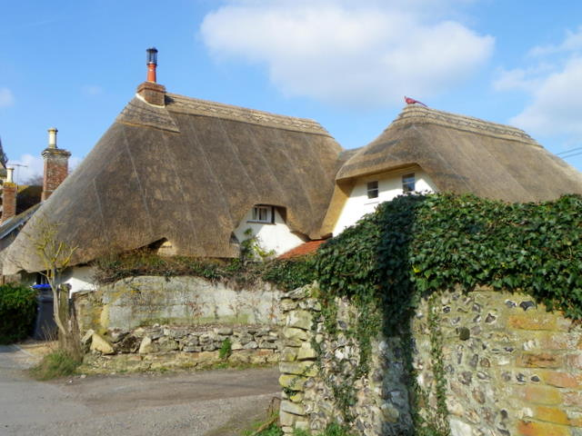 Thatched cottage, Newton Tony