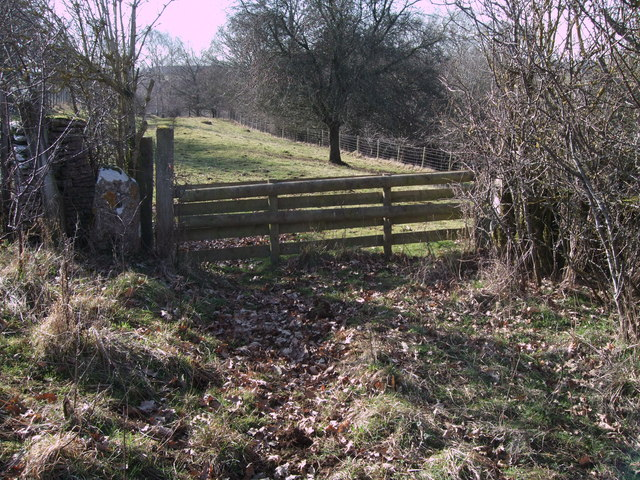 Hunter's gate leading to The Warren