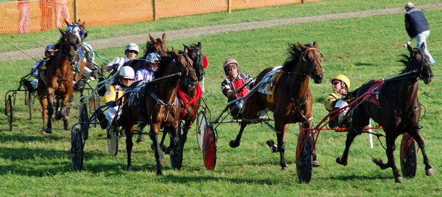 Harness racing at Haugh Field, Stirling