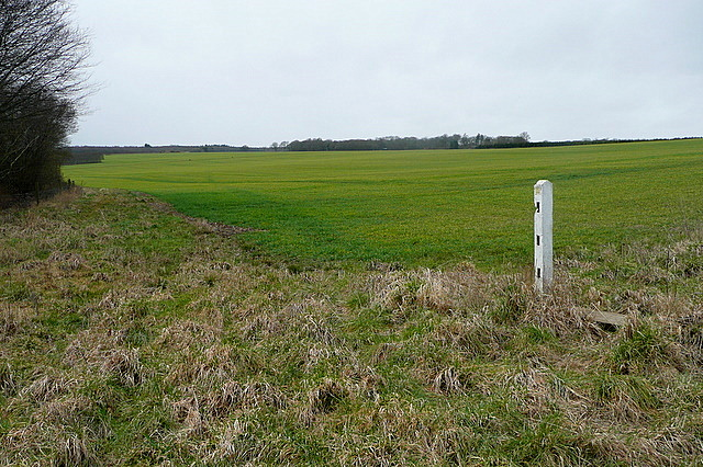 Farmland north of A4