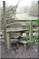 SK4680 : Stile on path Mansfield Road to Dale Road by John Jennings