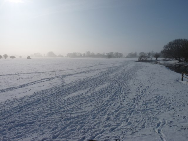 Tracks in the snow on the marshes