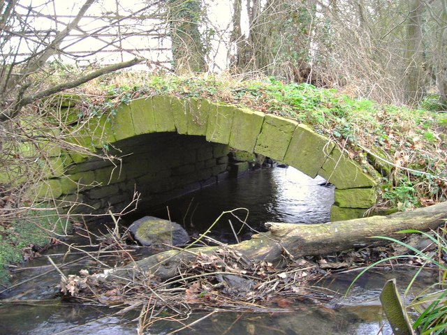 Rudimentary bridge over Trutts Brook