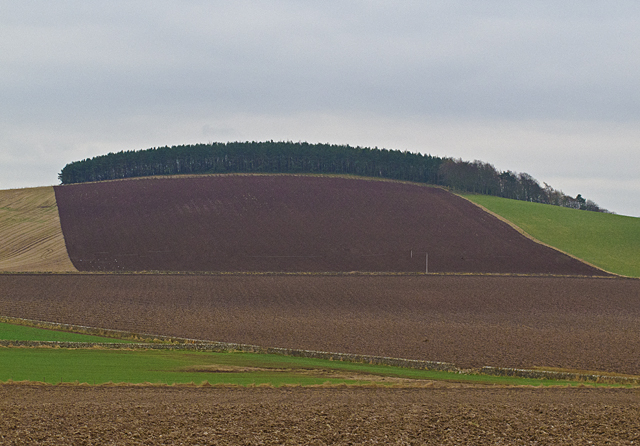 Farmland at Clubston
