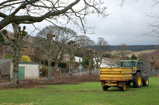 Trimming trees on Tweed Green, Peebles