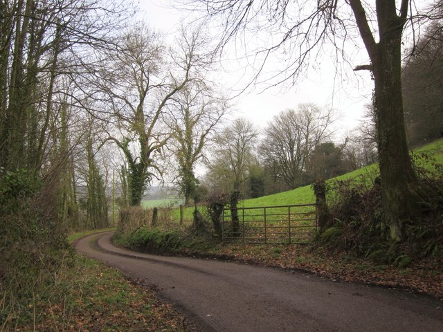 Lane to Burrow Hill Farm