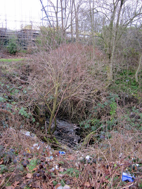 The Chad Brook Emerging From A Culvert