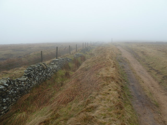 Moorland on a misty morning