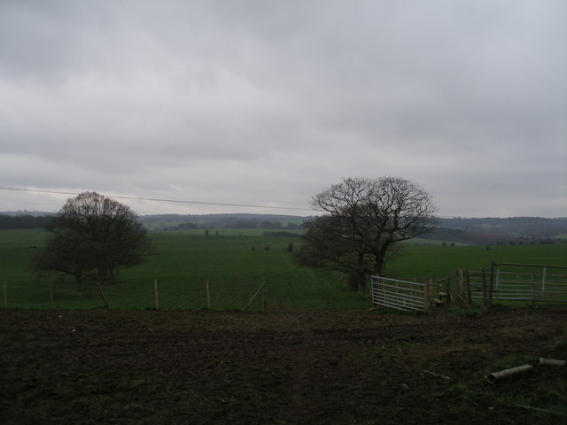 The footpath from Pilley towards Wortley