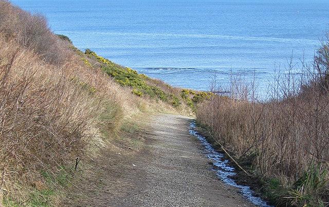 Drain into Cornelian Bay