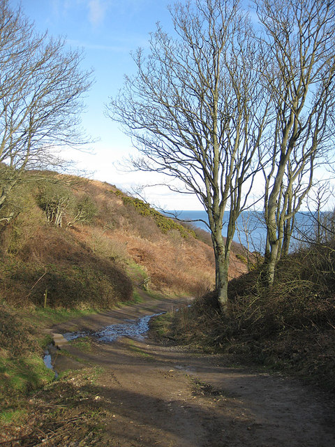Cleveland Way heads down a ravine