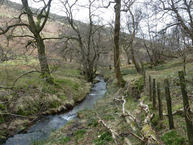 Jaggers Clough below the Backside Wood footbridge