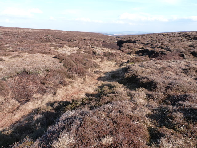 Near the source of the River Don