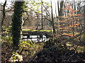 SP0584 : Chad Brook, Edgbaston Golf Club from Edgbaston Park Road  by Phil Champion