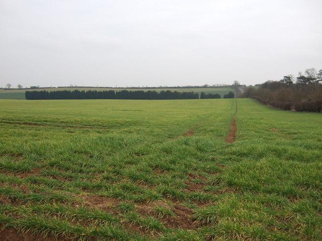 Farmland, Heath Farm