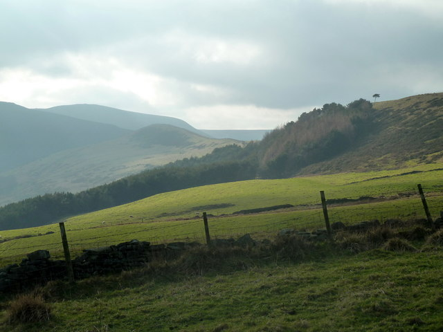 Grassy slopes on the south side of Lose Hill