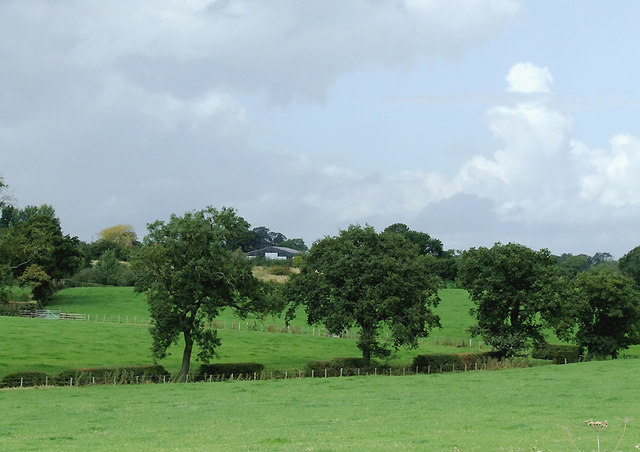Farmland south of Church Minshull, Cheshire