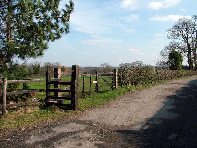 Cheshire Lane