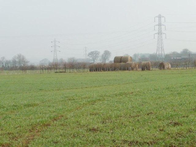 Straw bales at Mill Hill