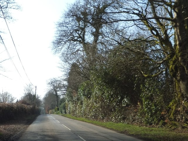 Road passing Rackenford Manor