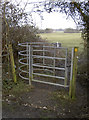 ST6167 : Kissing gate, Whitchurch by Neil Owen