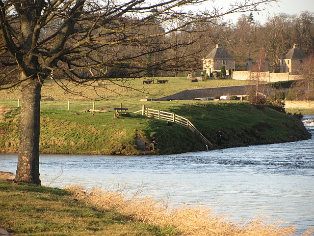 Confluence of Tweed and Teviot, Kelso