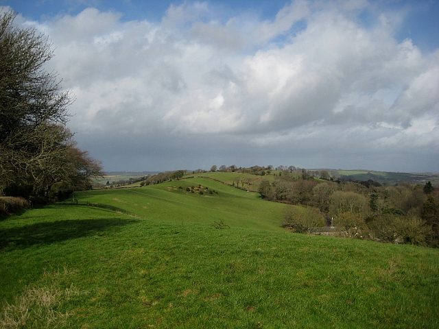 Blackdown Hill