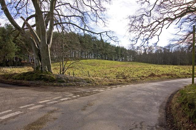 Gallow Hill