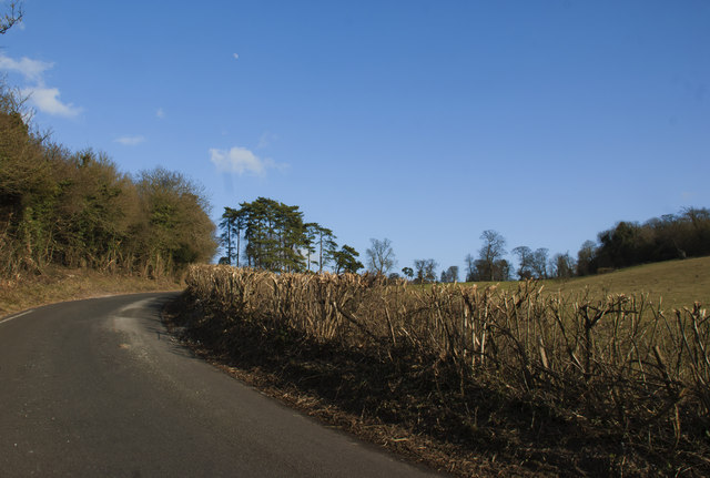 Chipstead Lane into White Hill