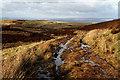 NY5756 : A right of way path at Kelky Fell by Walter Baxter