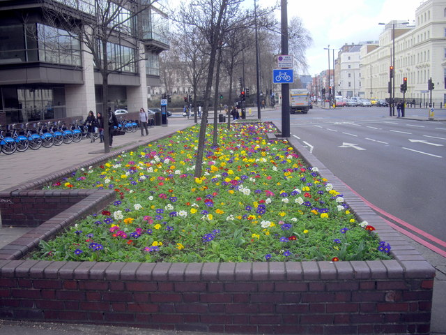 Flower bed on Vauxhall Bridge London