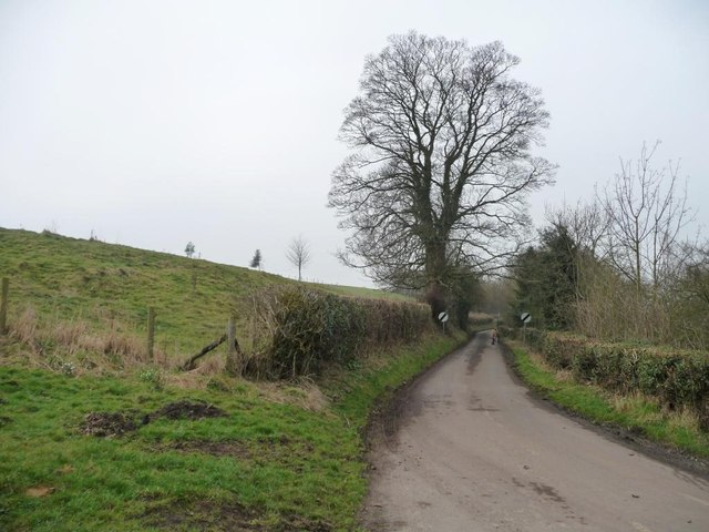 Leppington Lane