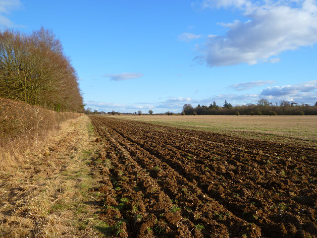 Farmland, Crawley