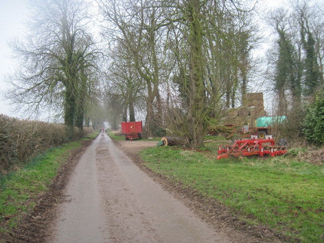 Low  Balk  Lane  from  Low  Balk  Farm